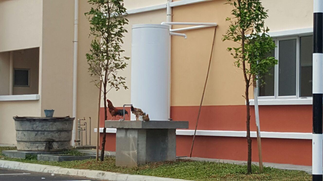 Voda Rainwater Harvesting System Malaysia - Jabatan Kerja Raya JKR Kajang - MKH Berhad - Bungalow Semi-D Apartment