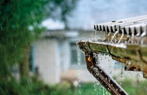 Rainwater Harvesting Systems – Is It Worth The Investment